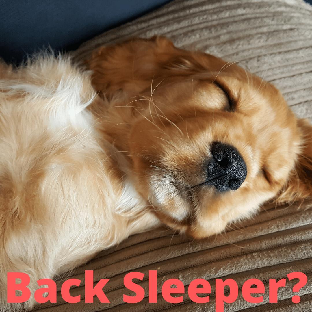Back sleeper neck pain